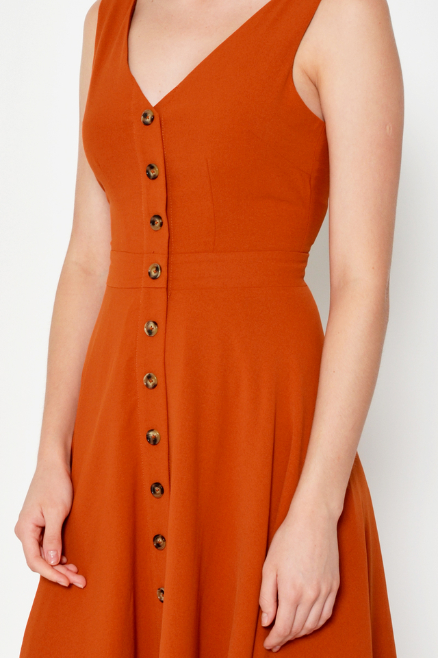NATHANYA BUTTONDOWN SWING DRESS