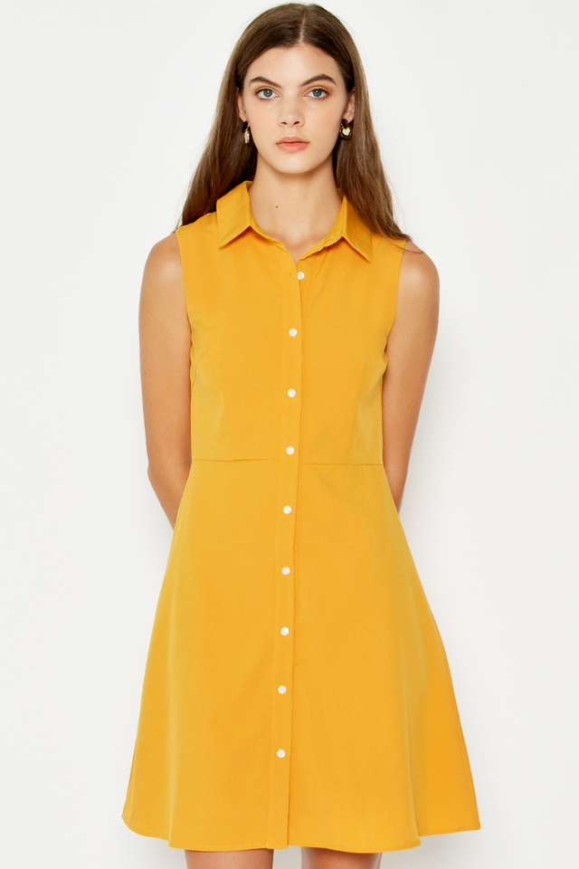 FELISE BUTTONDOWN FLARE DRESS